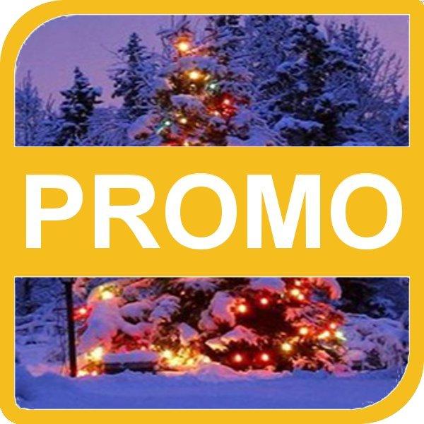 201312_cornice_promozione